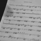 Armonia funzionale e teoria